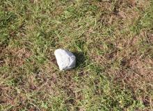der hering-stein, der jedes mal nach dem zusammenpacken auf dem camping zurückbleibt